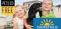 shorefield caravans with dogs